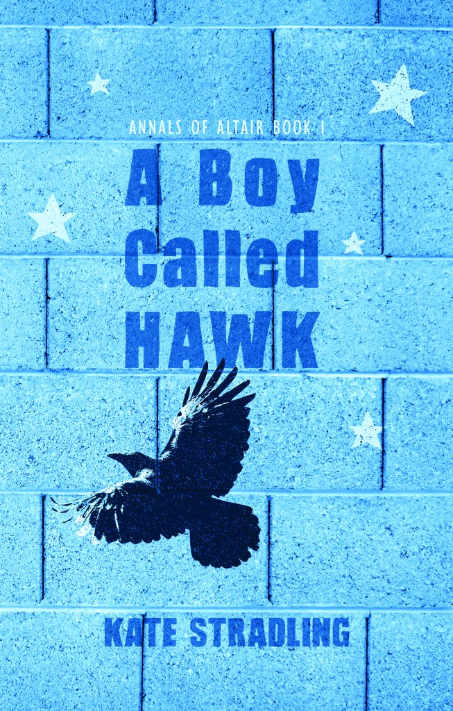 Book Cover: A Boy Called Hawk by Kate Stradling